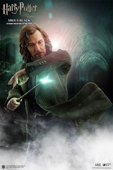 Star Ace Harry Potter and The Order of the Phoenix Sirius Black