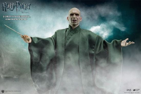 Star Ace Harry Potter and The Deathy Hallow Lord Voldemort